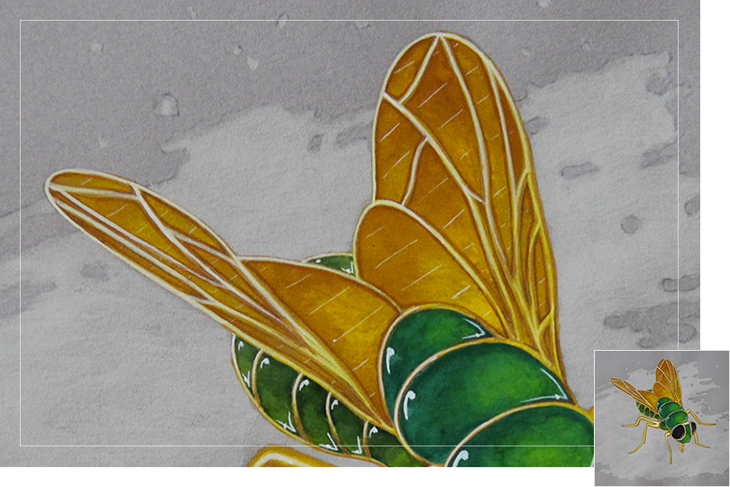 peridot golden fly insect drawing jewelry painting