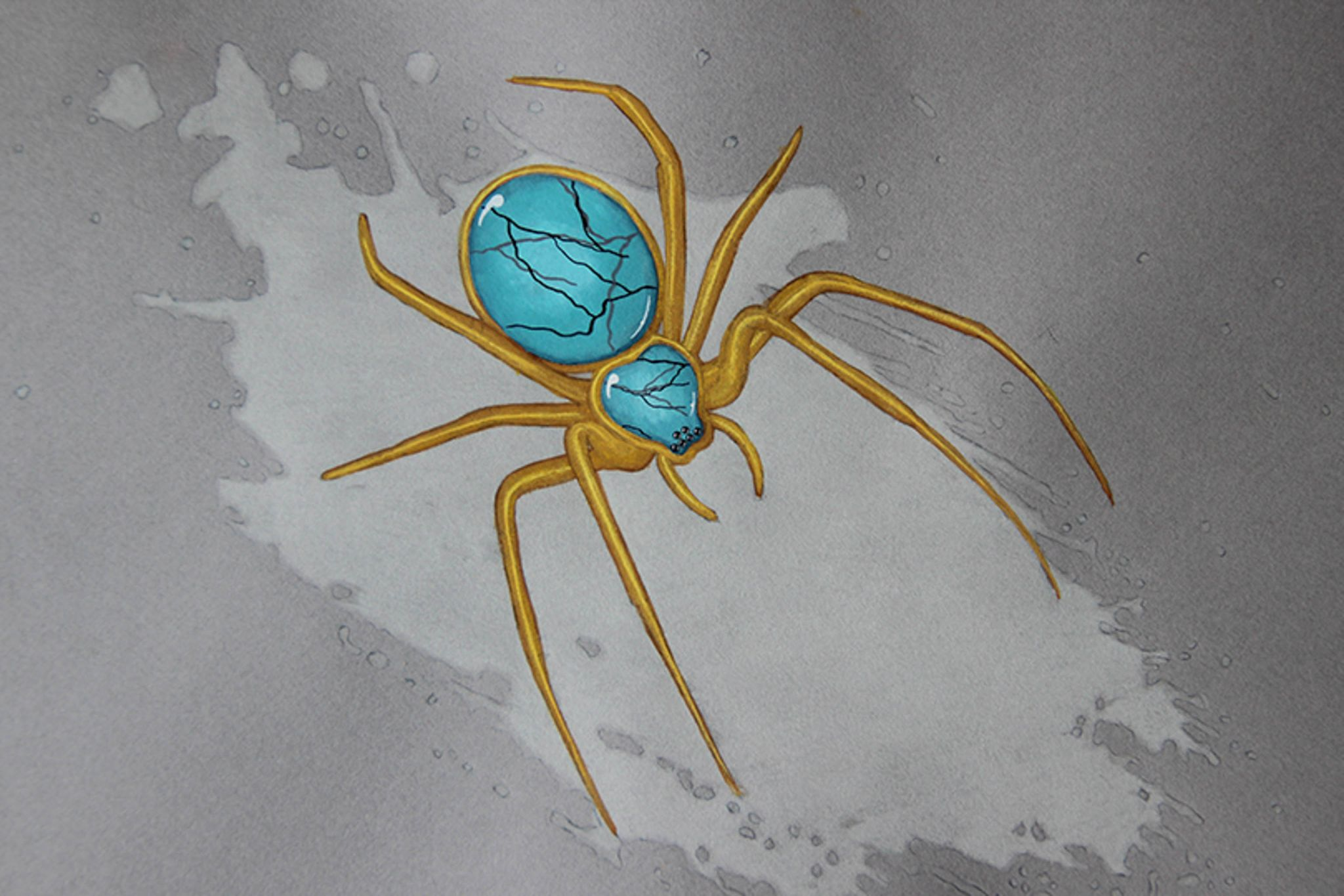 Turquoise golden spider
