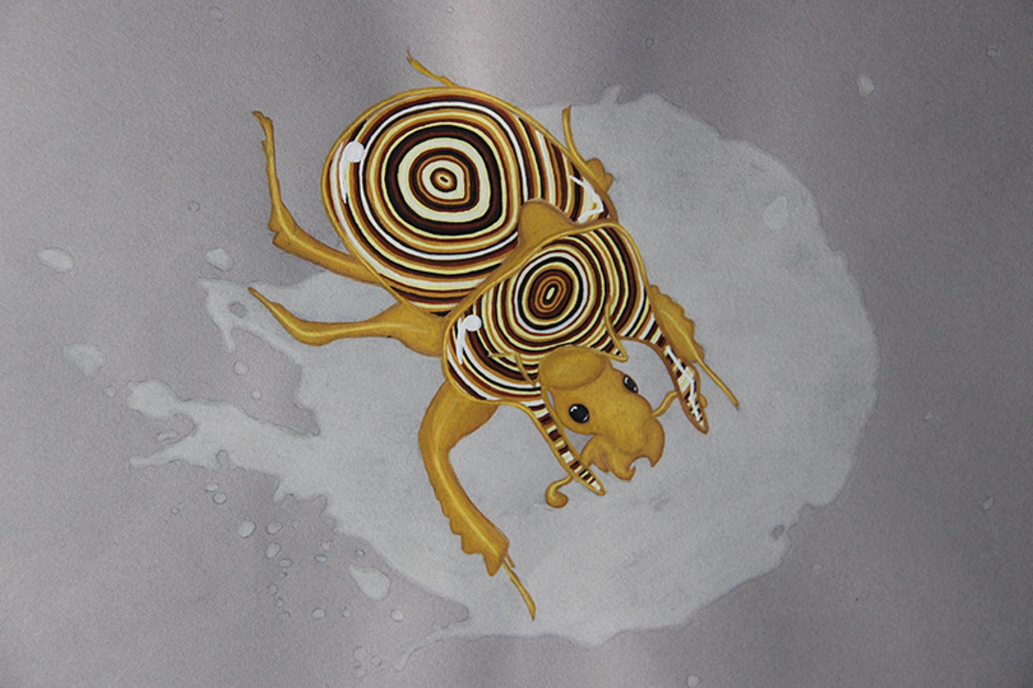 Agate minotaur beetle insect drawing
