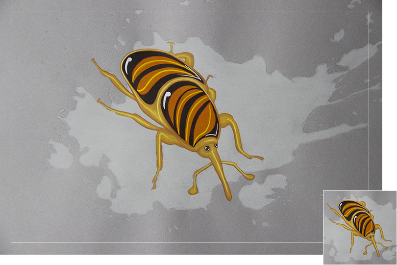 tiger's eye chalcedony quartz beetle insect drawing jewelry