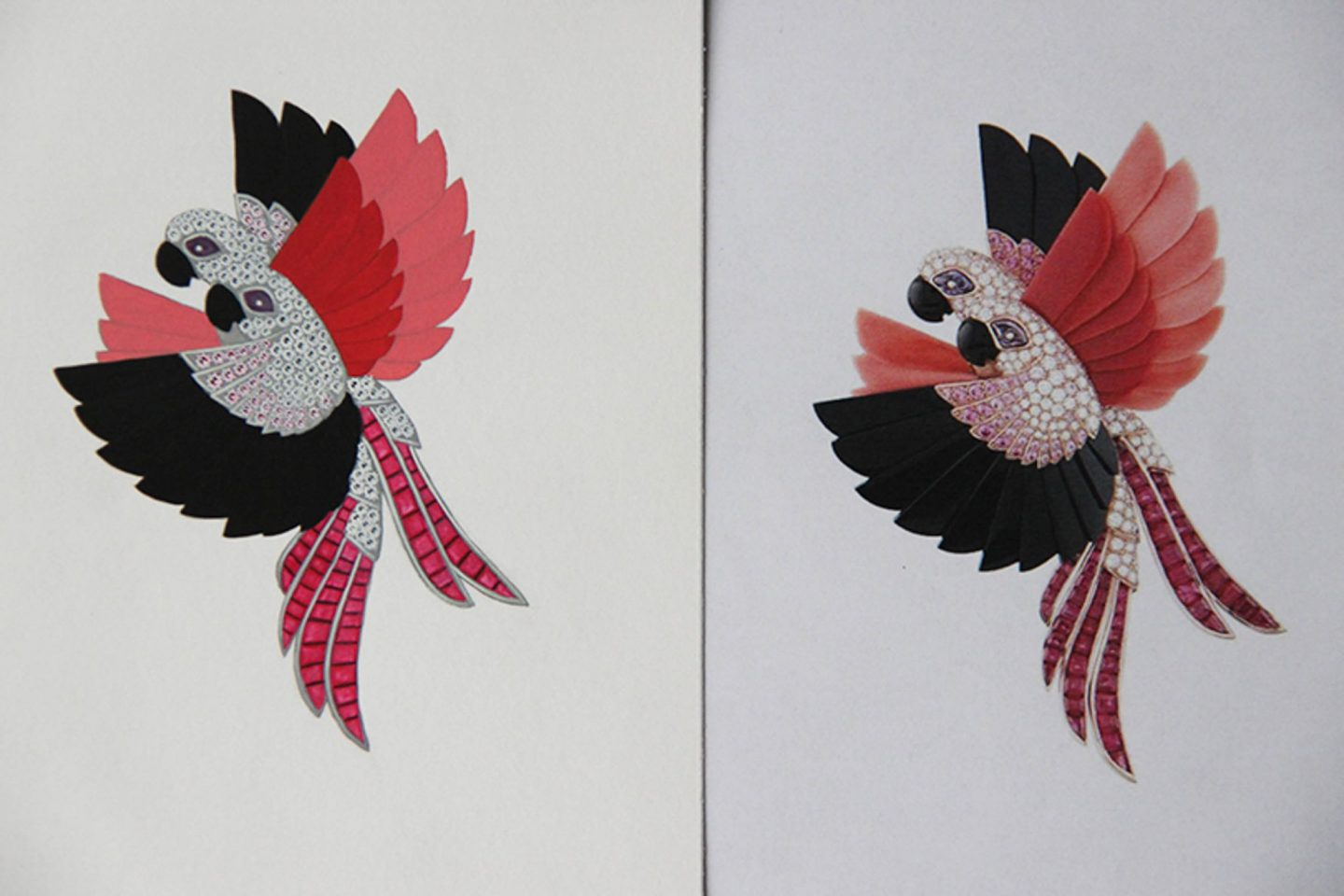 Shine & draw Jewelry drawing reproduction Parrots paradise brooch