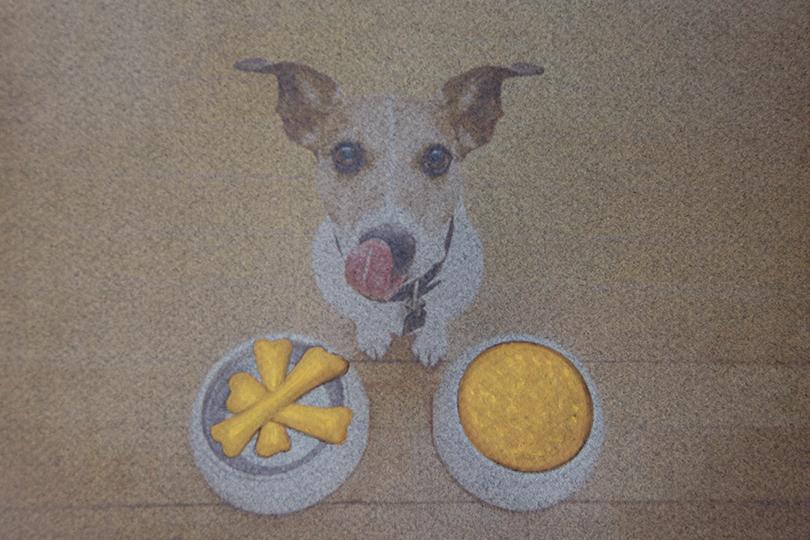 jewelry celebrations undercovertoad international dog's day