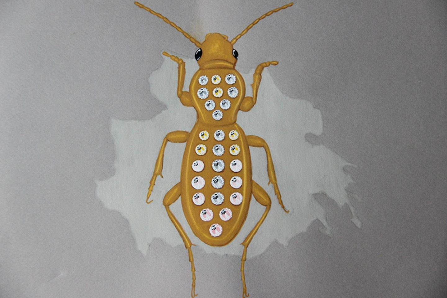 Undercovertoad diamond ground beetle drawing jewelry